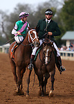 "October 06, 2018 : #7 Golden Mischief and jockey Florent Geroux win the 38th running of the Thoroughbred Club of America (Grade 2) $250,000 ""Win and You're In Breeders' Cup Filly & Mare Sprint Division"" for trainer Brad Cox and owner Juddmonte Farms at Keeneland Race Course on October 06, 2018 in Lexington, KY.  Candice Chavez/ESW/CSM"