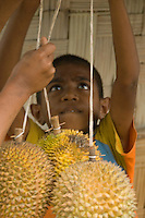A young boy sells durians at a roadside stand in the mountains south of Dili, Timor-Leste (East Timor)