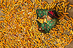 Overhead view of a merchant surrounded by a pile of corn, Essaouira, Morroco