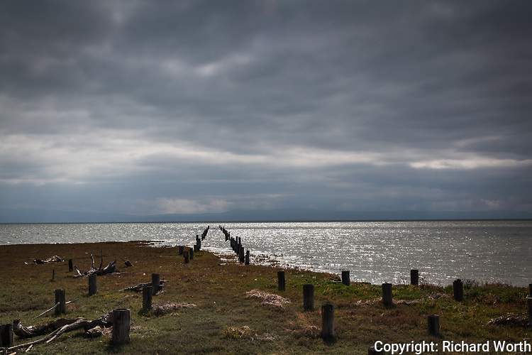 The abandoned pilings along San Lorenzo Creek trail define a path into San Francisco Bay under dark overcast skies.  On the horizon, the blue outline of the Santa Cruz Mountains.