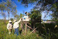 All of Carlos' hives are set up on piles. Despite this precaution, he lost three quarters of his stock, nearly 800 hives, when in 2006 the water rose four meters in a few hours.
