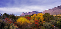 Sunrise on El Capitan and fall colors, Guadalupe Mountains National Park, Texas, USA, November 2005