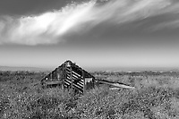 An abandoned shack slowly sinks into the marsh at the ghost town of Drawbridge in southern San Francisco Bay. Drawbridge was a hunting village started in the 1880's with the last resident leaving in the 1970's.