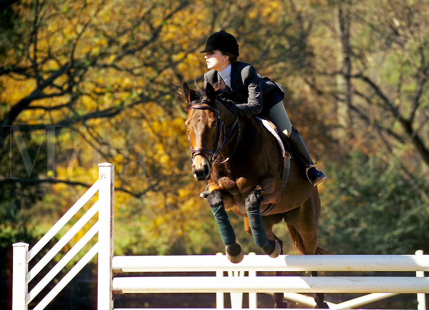 Young woman jumps horse over obstacle during hunt seat competition.