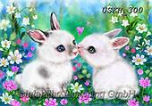 Kayomi, CUTE ANIMALS, LUSTIGE TIERE, ANIMALITOS DIVERTIDOS, paintings+++++,USKH300,#ac#, EVERYDAY ,#A#,realistic,rabbit