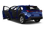 Car images of 2021 Lexus UX-300e Privilege 5 Door SUV Doors