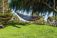 A colorful hammock is strung up between trees at a neighborhood park.