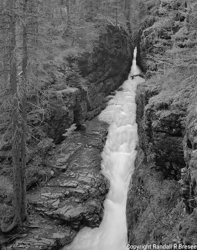 """""""Cutting Power Of Water"""" Glacier National Park, Montana <br /> <br /> The power of water to cut through rock is demonstrated clearly at Sunrift Gorge in Glacier National Park. A moderately slow shutter speed was used to blur the water enough to make it """"silky smooth"""" but not so much that water flow patterns lost their general form. A substantial amount of perspective correction was needed to make the tree on the left stretch upward accurately in the photograph and it was accomplished by tilting the film plane. I think this black and white photo shows a nice contrast between the smooth water and the rough rock."""