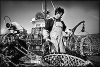 Europe/France/Bretagne/29/Finistère/Le Conquet: Pêche au homard sur le Louarn Ar Mor  avec Alain Le Bras [AUTORISATION N°265]