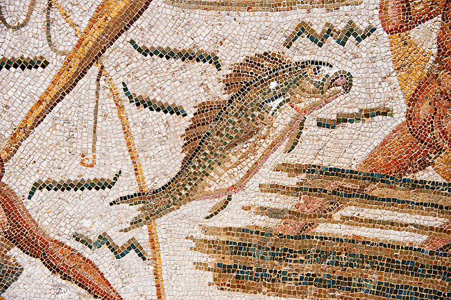 Detail of a fish from a Roman mosaic depicting fishermen from the north African Roman province of Africanus . Inv 2384, Bardo Museum, Tunis, Tunisia.