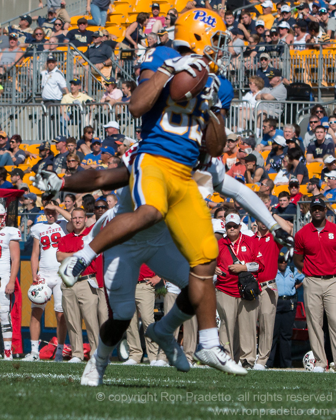 Pitt wide receiver Rafael Araujo-Lopes makes a catch. The North Carolina Wolfpack defeated the Pitt Panthers 35-17 at Heinz Field, Pittsburgh, PA on October 14, 2017.