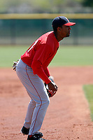 Wil Ortiz - Los Angeles Angels - 2009 spring training.Photo by:  Bill Mitchell/Four Seam Images