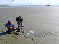 Kinder im Watt, graben bei Ebbe, Niedrigwasser in den Wattflächen nach Tieren, im Hintergrund der Leuchtturm von Westerhever, Nationalpark Schleswig-Holsteinisches Wattenmeer