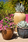A cluster of containers set against a brightly painted, pink wall at Phoenix's Desert Botanical Garden