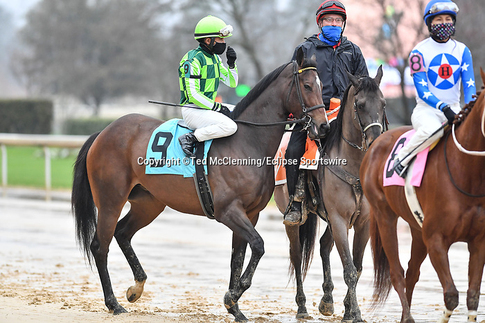 February 27, 2021: #9, Kimari in the post parade for the Spring Fever Stakes at Oaklawn Park in Hot Springs, Arkansas. Ted McClenning/Eclipse Sportswire/CSM