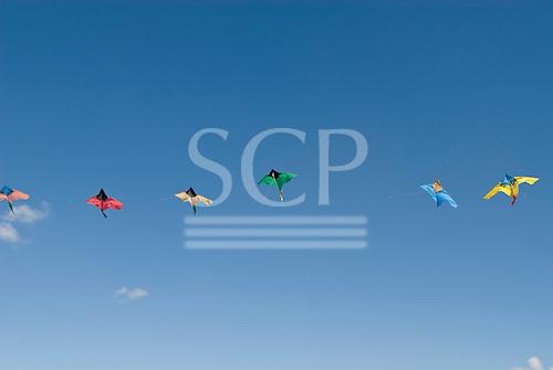 Brasilia, Brazil. String of colourful kites flying in the wind.