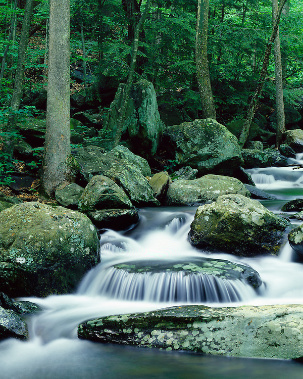 Stream and waterfall in Whiteoak Canyon; Shenandoah National Park, Virginia