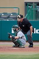 Umpire Rick Darby and Dartmouth Big Green catcher Logan Adams (10) during a game against the USF Bulls on March 17, 2019 at USF Baseball Stadium in Tampa, Florida.  USF defeated Dartmouth 4-1.  (Mike Janes/Four Seam Images)