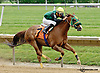 Tinder Lord winning at Delaware Park racetrack on 6/21/14