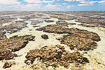 Australien, Queensland, Lady Elliot Island, Great Barrier Reef, reisen, Insel, Koralleninsel, Meer, Korallen, Niedrigwasser, Ebbe, 10/2014<br />engl.: Australia, Queensland, Lady Elliot Island, Great Barrier Reef, low tide, coral reef, travel, 10/2014