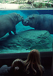 San Diego, CA.  Balboa Park & Zoo