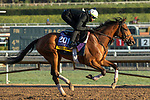 ARCADIA, CA  OCTOBER 30: Breeders' Cup Distaff entrant Dunbar Road, trained by Chad C. Brown, exercises in preparation for the Breeders' Cup World Championships at Santa Anita Park in Arcadia, California on October 30, 2019. (Photo by Casey Phillips/Eclipse Sportswire/CSM)