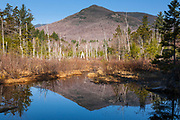 Pemigewasset Wilderness - Wetlands area along the Franconia Brook Trail in Lincoln, New Hampshire USA. The southern end of Owls Head is off in the distance. A spur line of the old East Branch & Lincoln Logging Railroad traveled through this area.