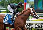 May 8, 2021: Promise Keeper, ridden by Luis Saez, wins the 2021 running of the G3 Peter Pan S. at Belmont Park in Elmont, NY. Sophie Shore/ESW/CSM