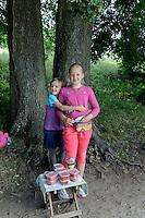 Verkauf von Erdbeereb bei  Schloss Trakai, Litauen, Europa
