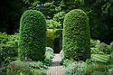 Clipped yew columns in the Old Garden, Vann House, Surrey, mid June.
