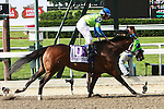 Redeemed with Ramon Dominguez aboard win the 124th running of the Grade II Brooklyn Handicap for 3-year olds and up, going 1 11/2 miles. Trainer Richard Dutrow.  Owner Jay Em Ess Stable