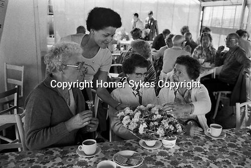 Isle of Man, 1970s. Carnation tea at flower growing centre Peel .