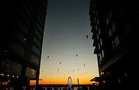 Seattle Scenics