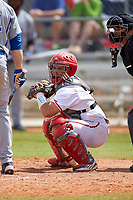 Indiana Hoosiers catcher Demetrius Webb (7) during a game against the Seton Hall Pirates on March 5, 2016 at North Charlotte Regional Park in Port Charlotte, Florida.  Seton Hall defeated Indiana 6-4.  (Mike Janes/Four Seam Images)