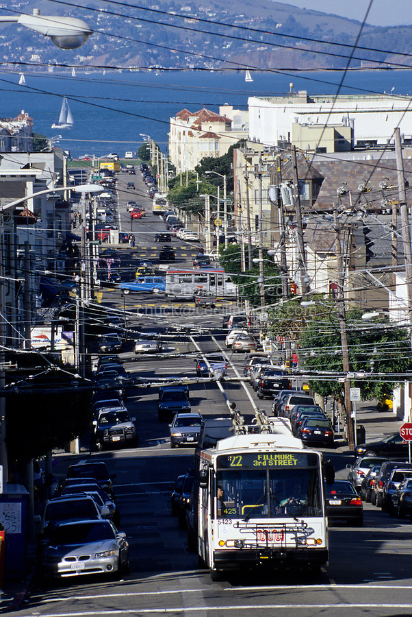 San Francisco, California - Electric Bus, Visual Pollution.  While saving fossil fuels, electric power necessitates electric wires that interfere with an otherwise unhindered view, creating a kind of visual pollution.  Cow Hollow District.