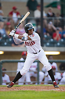 Hunter Greene (49) of the Billings Mustangs at bat against the Missoula Osprey at Dehler Park on August 21, 2017 in Billings, Montana.  The Osprey defeated the Mustangs 10-4.  (Brian Westerholt/Four Seam Images)
