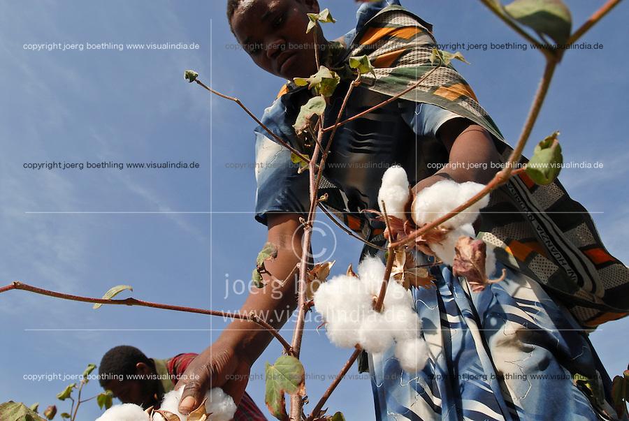Tanzania, organic cotton project biore of swiss yarn trader Remei AG in Meatu district, women harvest bio cotton / Tansania , biore Biobaumwolle Projekt der Schweizer Remei AG in Meatu, Frauen ernten Biobaumwolle