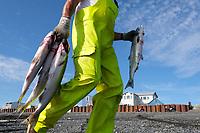 Bristol Bay sockeye salmon fishing 2019