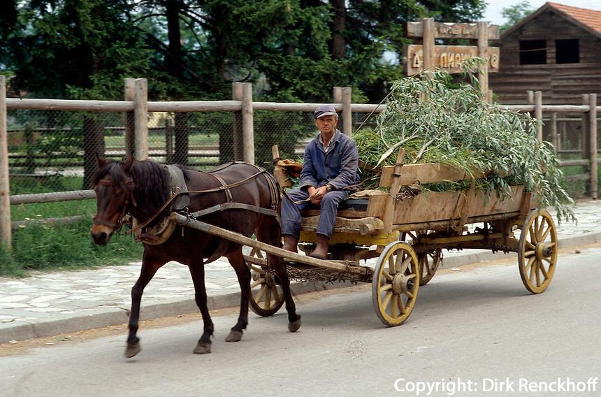 Bulgarien, Pferdewagen in Samakov