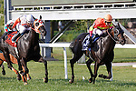 September 1, 2014: Sharp Sensation (#3), David Moran up, holds off a hard-charging Ben's Cat (left) to win the grade 3 Turf Monster Handicap at Parx Racing in Bensalem, PA. Trainer is Reade Baker. Owners are Jim and Susan Hill. ©Joan Fairman Kanes/ESW/CSM