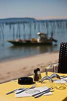 Europe/France/Aquitaine/33/Gironde/Bassin d'Arcachon/Le Cap Ferret: A la terrasse du restaurant: L'Escale, en fond le bassin et la Dune du Pilat