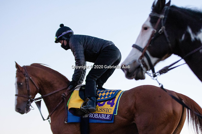 Improbable, trained by trainer Bob Baffert, exercises in preparation for the Breeders' Cup Classic  at Keeneland Racetrack in Lexington, Kentucky on November 4, 2020. Gabriella Audi/Eclipse Sportswire/Breeder's Cup/CSM