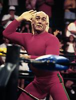 Hulk Hogan 1995                                                                     By John Barrett/PHOTOlink