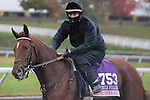 October 28, 2015:  Land Over Sea, trained by Doug F. O'Neill and owned by Reddam Racing, LLC, exercises in preparation for the The 14 Hands Winery Breeders' Cup Juvenile Fillies at Keeneland Race Track in Lexington, Kentucky on October 28, 2015. Jon Durr/ESW/CSM