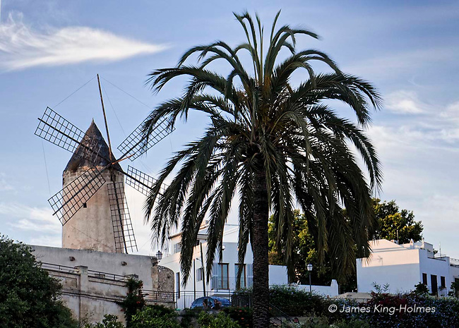 Windmills dominate the high terrain of El Jonquet above the marina area in Palma de Mallorca, Balearic Islands, Spain above the many palm trees lining the Passeig Maritimo which runs along the waterfront.