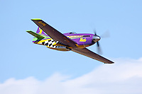 """P-51D Mustang racer """"Voodoo"""" during the Unlimited Gold Race at the 2009 Reno National Championship Air Races."""