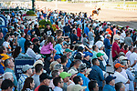 HALLANDALE BEACH, FL - March 3: Scenes from Xpressbet Fountain of Youth Stakes Day at Gulfstream on March 3, 2018 in Hallandale Beach, FL. (Photo by Carson Dennis/Eclipse Sportswire/Getty Images.)