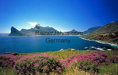 South Africa, Cape Town, Hout Bay