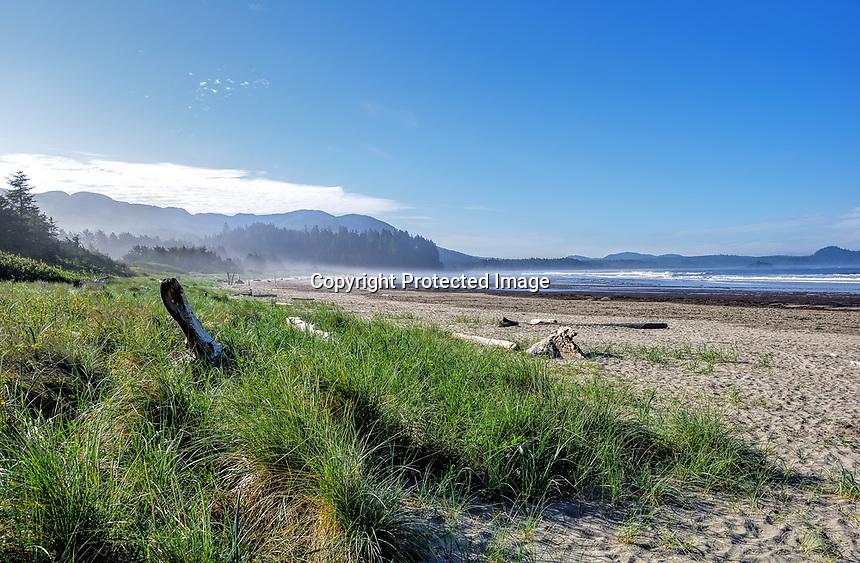 A foggy morning at Hobuck Beach, Makah Indian Reservation, WA.