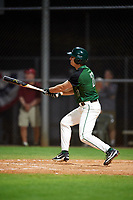 Dartmouth Big Green pinch hitter Oliver Campbell (27) at bat during a game against the Northeastern Huskies on March 3, 2018 at North Charlotte Regional Park in Port Charlotte, Florida.  Northeastern defeated Dartmouth 10-8.  (Mike Janes/Four Seam Images)